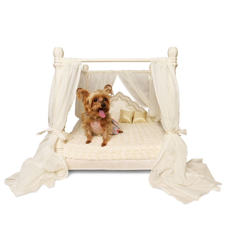 Jaiga Poster Ivory Velvet Pet Bed